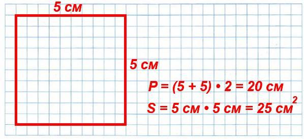 176. Начерти квадрат, периметр которого равен 20 см. Найди его площадь.