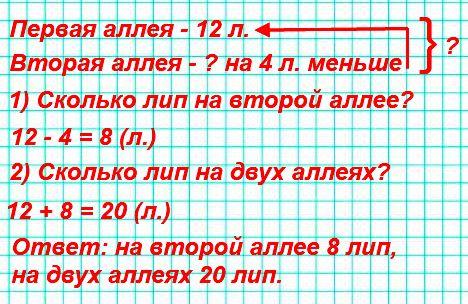 На одной аллее 12 лип, а на другой на 4 липы меньше. Поставь разные вопросы и реши задачи.