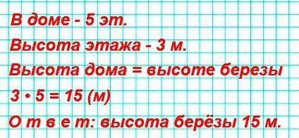 В нашем доме 5 этажей. Высота каждого этажа 3 м. У дома растёт берёза, вершина которой достаёт до крыши. Узнай высоту берёзы.